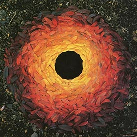 Artist Andy Goldsworthy